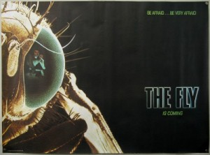 TheFly_quad_advance-1-500x370