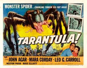 tarantula5