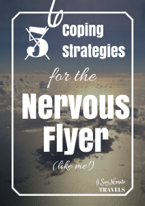 6 Coping Strategies for the Nervous Flyer - I Say Nomato Nightshade Free Food Blog