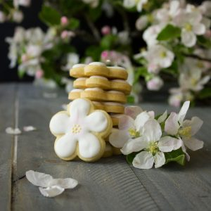 Apple Blossom Sugar Cookies