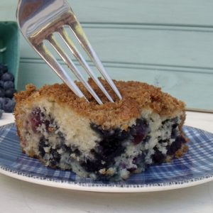 Heather's Blueberry Cake – Guest Post from the Bluenose Baker