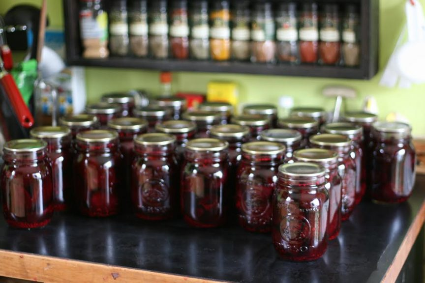 This recipe for Spiced Pickled Beets come from guest poster Jen from the Our Food Project at the Halifax Ecology Action Centre! These beets are so delicious, you'll eat the whole can!