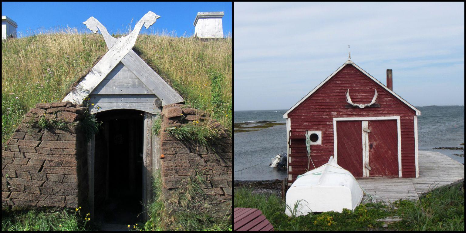 Newfoundland7