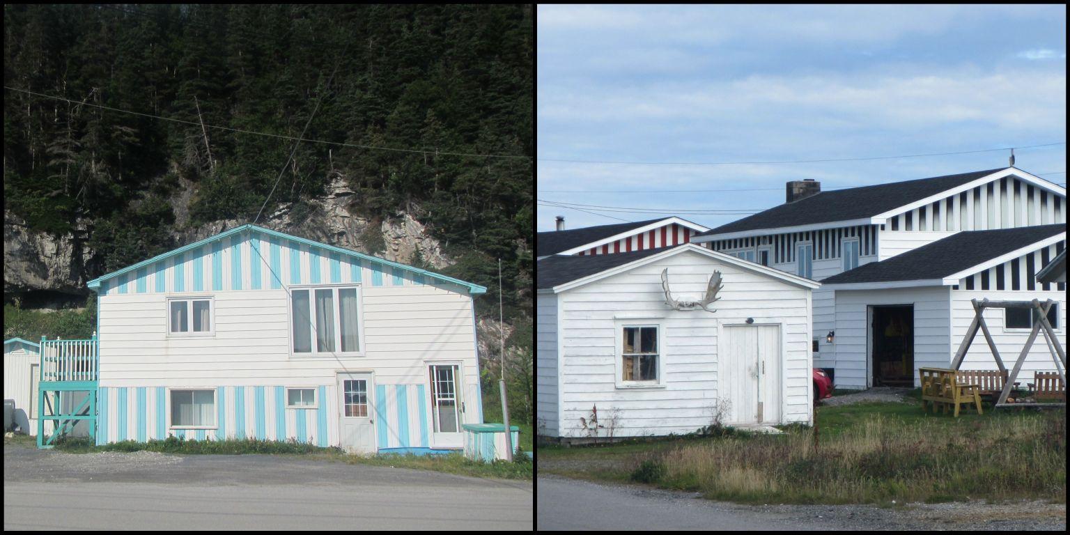 Newfoundland9