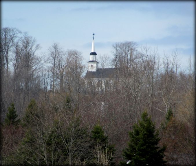 Noticed In Nova Scotia: Out And About In Springtime