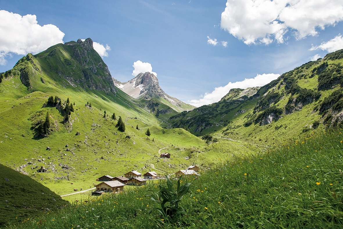 1003_Alpe Laguz im Biosphärenpark Großes Walsertal