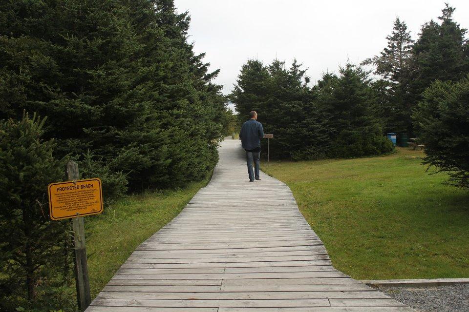 taylor_head_beach_trails1