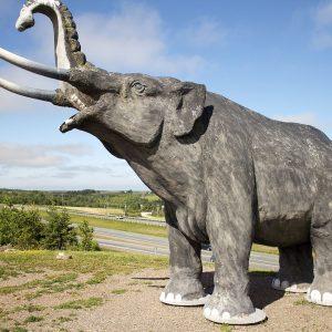 Mastodon Ridge – Stewiacke, NS