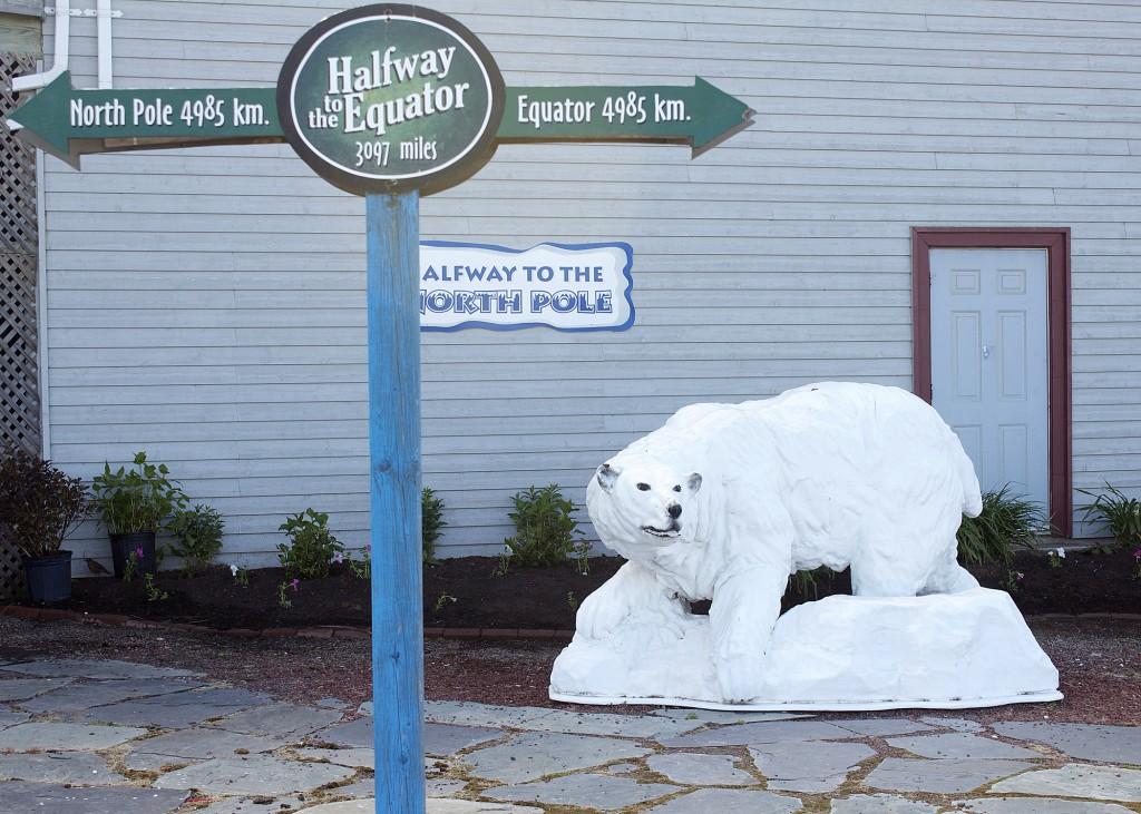 mastodon_ridge_polar_bear