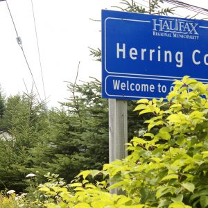 Bus Route #20 – Herring Cove