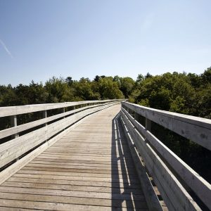 Active Transit Greenways: Lunenburg – Halifax by Trail!