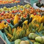 Farmers Market Lunenburg Nova Scotia