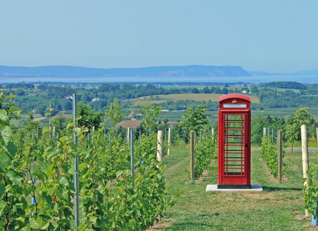 Petes Vinyard Phone booth Phone anywhere