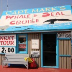 Captain Marks Whale Watching Adventure Travel Cape Breton Nova Scotia
