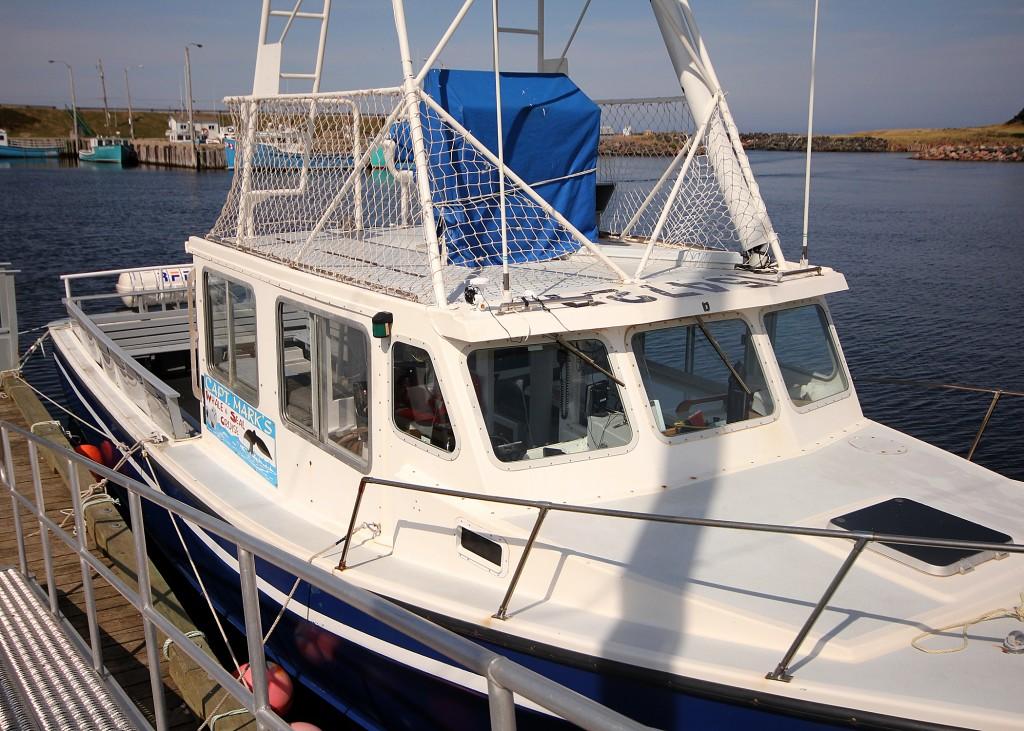 Captain Mark Whale Watching Boat Cape Breton Adventure Travel