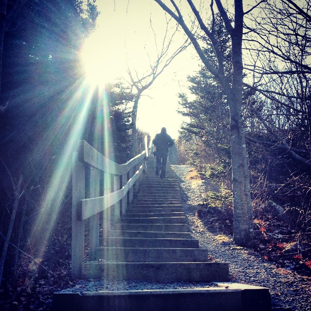 Man walking up staircase in York Redoubt Park Halifax Nova Scotia