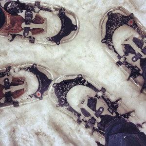 Snowshoeing at Shubenacadie Wildlife Park