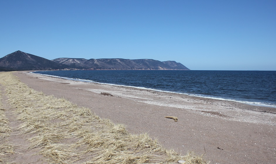 Dingwall Beach Cape Breton Nova Scotia