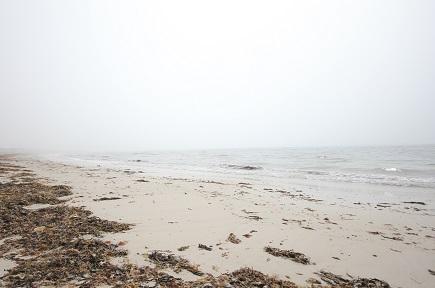 Nova Scotia Beaches – Cleveland Beach