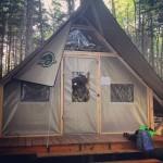 New oTENTik Camping at Keji