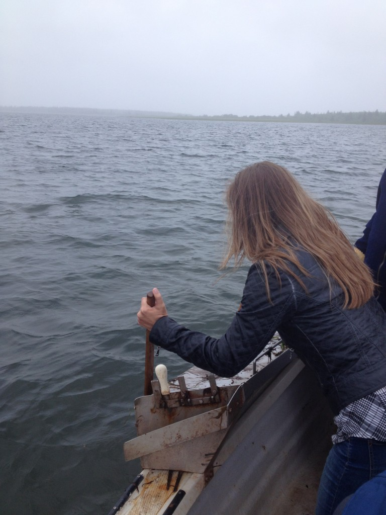Tonging for oysters in PEI
