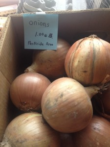 Onions Nova Scotia Farmers Market