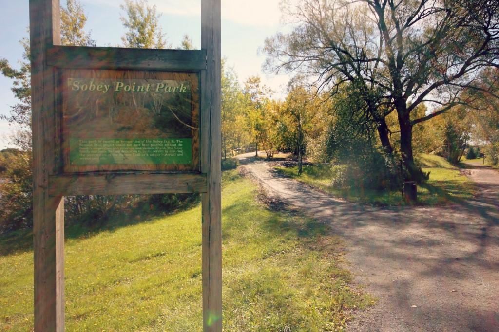 Sampson Trail 6