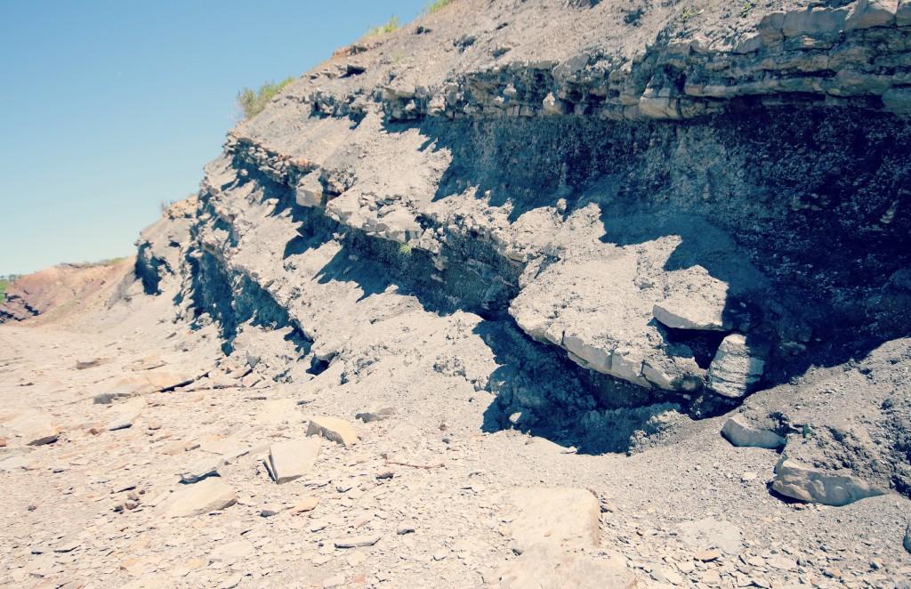 Joggins UNESCO World Heritage Site