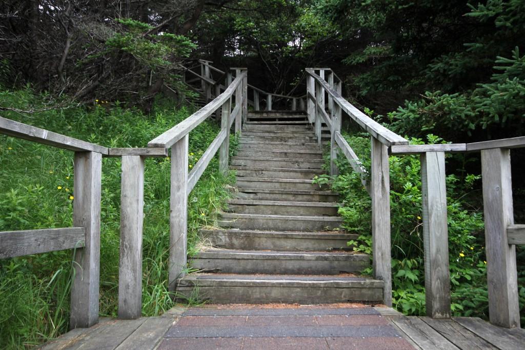 Smugglers Cove trails