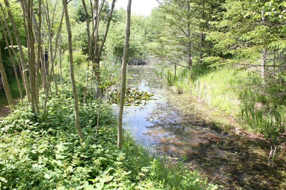 That Dutchman's Cheese Farm Nature Trails