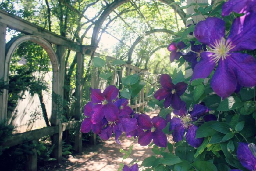 Gardens, Growlers And Whirligigs In South West Nova Scotia