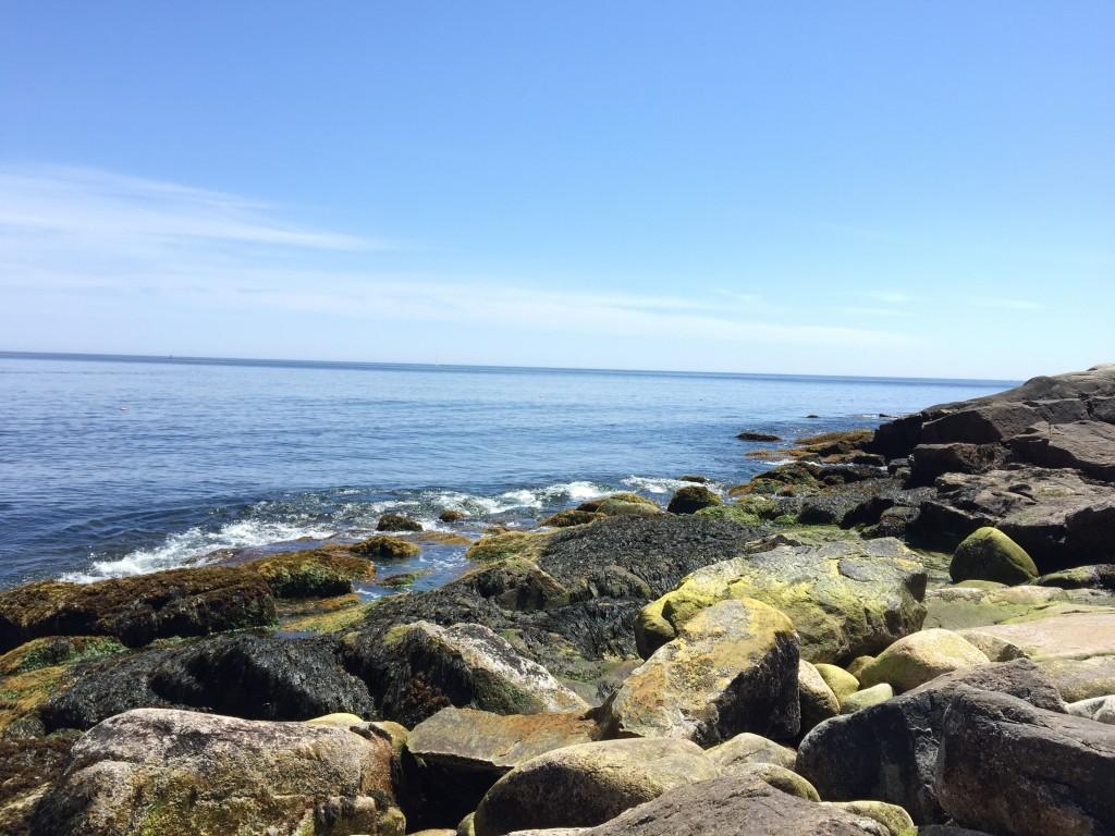 The Look Off Nova Scotia Purcells Cove