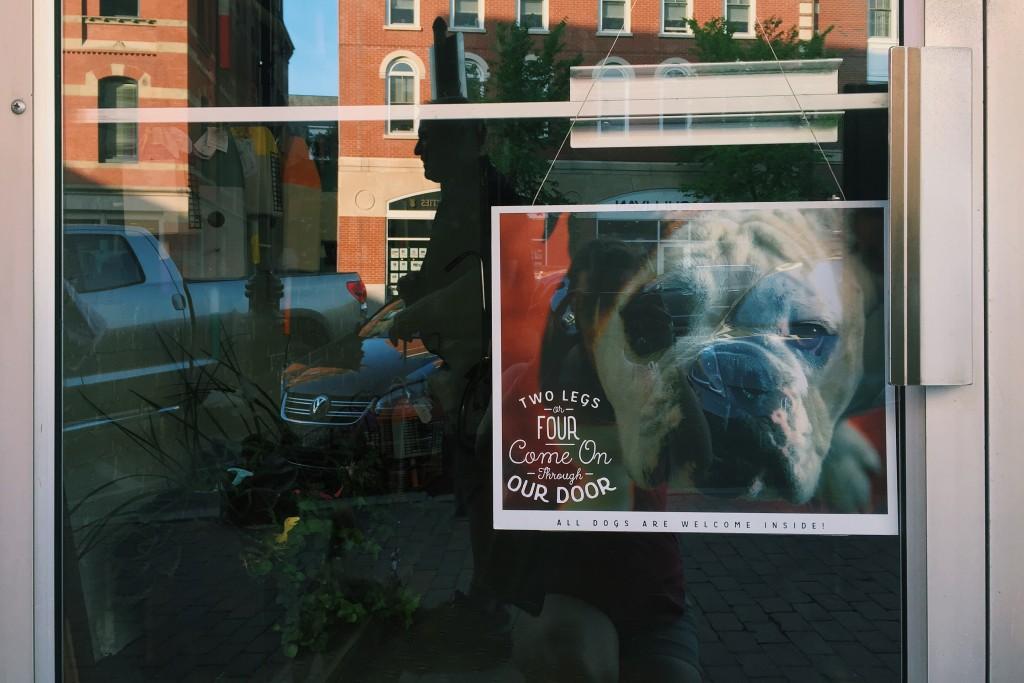 Dog Friendly Portsmouth