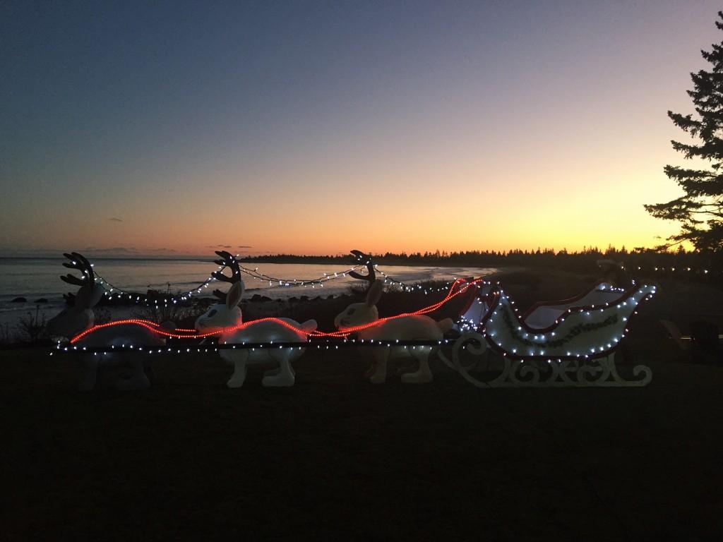 Jackalopes - Great light displays Nova Scotia