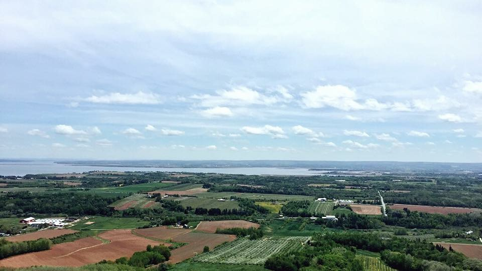 The Lookoff Blomidon