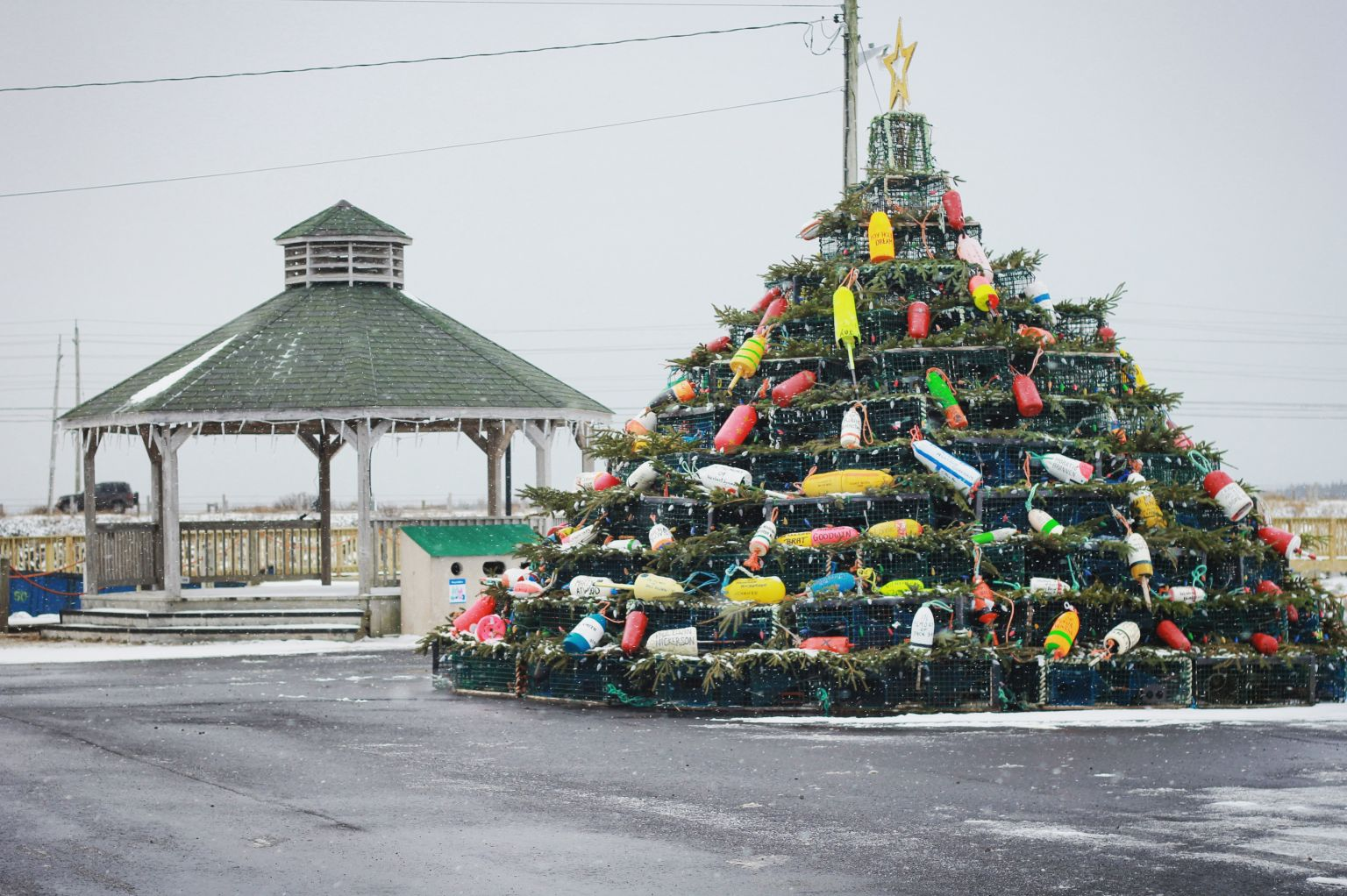 Barrington Lobster Trap Tree